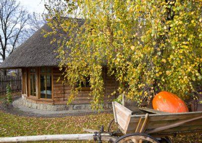 hotel-jasmin-poznan (2)